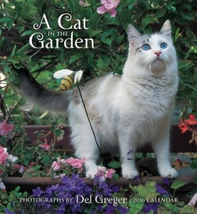 a-cat-in-the-garden-2016-wall-calendar-41